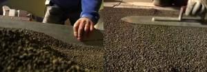 vermiculite pose